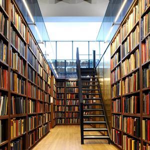 Библиотеки Богородицка