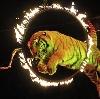 Цирки в Богородицке